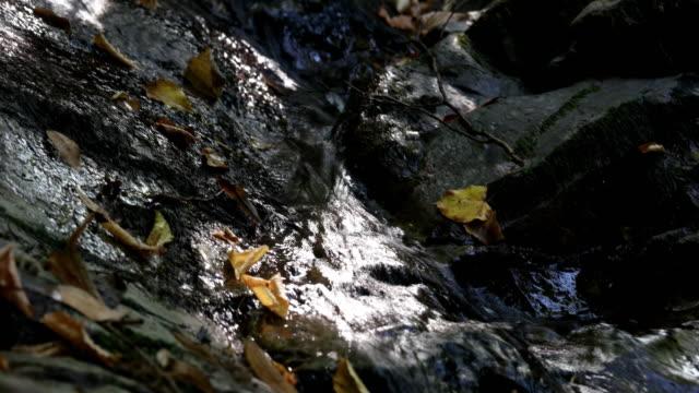 vídeos de stock, filmes e b-roll de córrego do movimento lento da água que derrama para baixo - rocha
