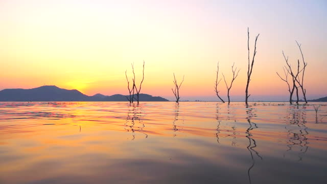 hd スローモーション: 湖の夕日 - 湖点の映像素材/bロール