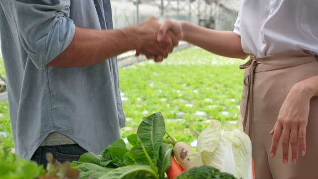 vídeos de stock e filmes b-roll de 4k slow motion the owner of an organic vegetable farm talked with customers about the export business. shake hands when successfully talking. - trabalhadora de colarinho branco