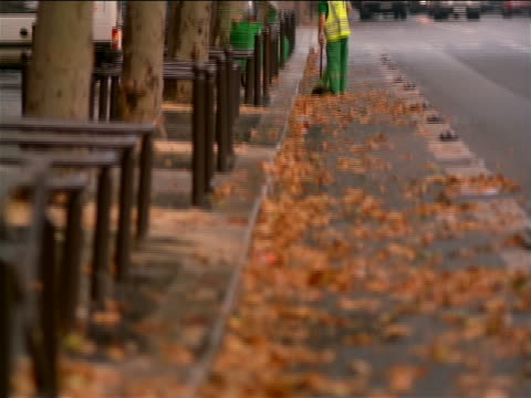 slow motion tilt up from leaves to man sweeping leaves on side of street lined by trees with traffic / Paris