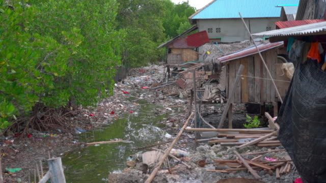 slow motion tilt up shot of garbage by stilt houses and trees in village - wakatobi regency, indonesia - indonesia earthquake stock videos & royalty-free footage