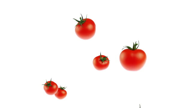 slow motion tomato flying up on white background - fruit stock videos & royalty-free footage