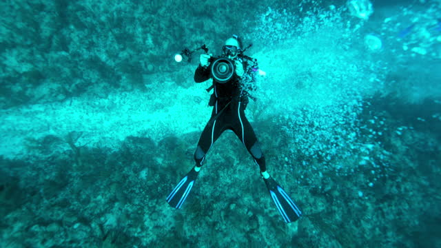 slow motion top view: scuba diver with camera over coral reef - belize city, belize - aqualung diving equipment stock videos & royalty-free footage