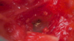Slow motion top view shot of Watermelon juice smoothie in the blender