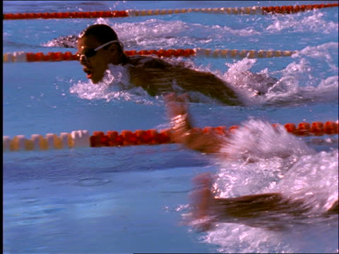 slow motion tracking shot of men swimming butterfly stroke in race - butterfly stroke stock videos and b-roll footage