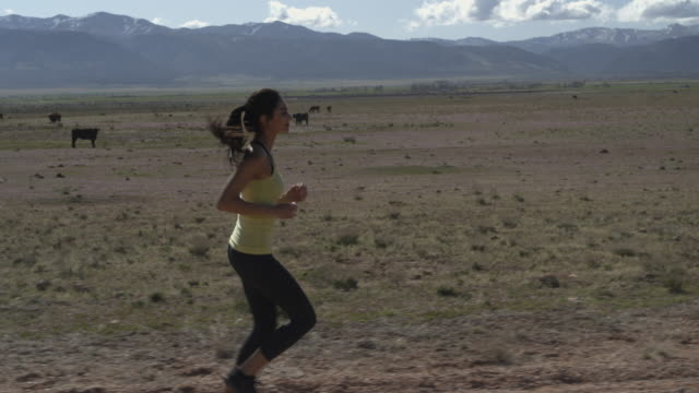 Slow motion tracking shot of woman running on dirt road near cows / Meadow, Utah, United States