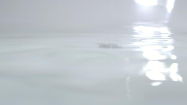 4kスローモーション水中ショットマシンスプレーターボ衛生用品で使用するために、水中の泡を作成します - 透明点の映像素材/bロール