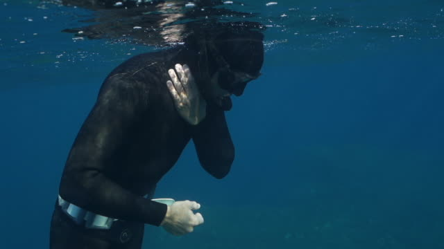 slow motion underwater shot of a scuba diver at the surface of the ocean - aquatic organism stock videos & royalty-free footage