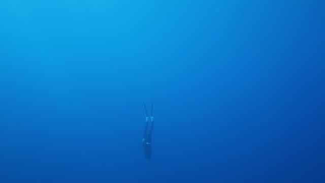 slow motion underwater shot of a scuba diver diving down into the ocean - underwater diving stock videos & royalty-free footage