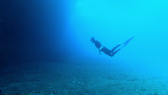slow motion underwater shot of a scuba diver swimming near the ocean floor - seabed stock videos & royalty-free footage