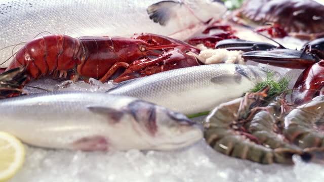 fhdスローモーション:豪華な新鮮なシーフード、ロブスターサーモンサバザリガニエビタコムール貝とホタテ、氷の凍った煙の流れと氷の背景に様々な。氷と小売市場のコンセプトに新鮮な冷 - 獲った魚点の映像素材/bロール
