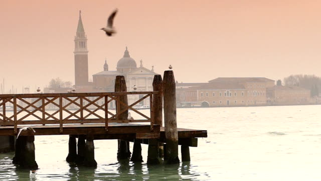 hd1080 slow motion venice - birds flying - grand canal venice stock videos & royalty-free footage