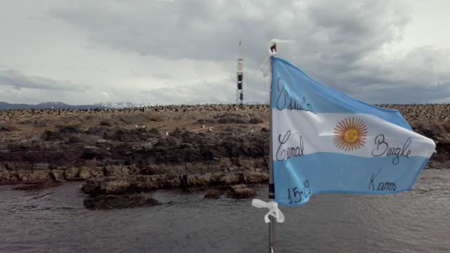 zeitlupenvideo einer argentinischen flagge gegen viele kaiserliche shags in der nähe von ushuaia, patagonien - argentinische flagge stock-videos und b-roll-filmmaterial