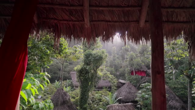 vídeos de stock e filmes b-roll de slow motion: view of several thatched huts among green tropical trees in el limon, dominican republic - ilha