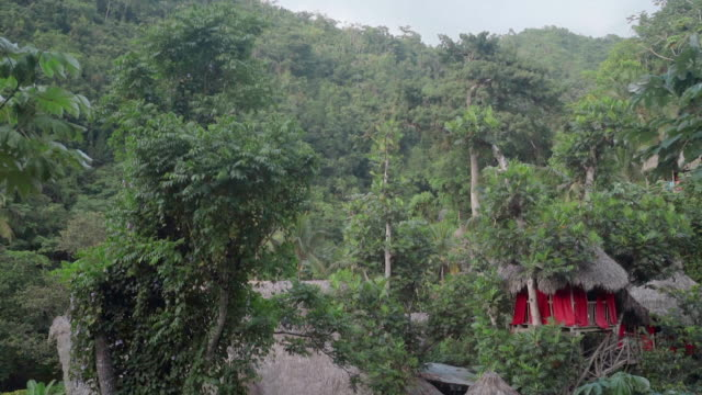 slow motion: view of thatched roof huts hidden among green trees in el limon, dominican republic - thatched roof stock videos & royalty-free footage