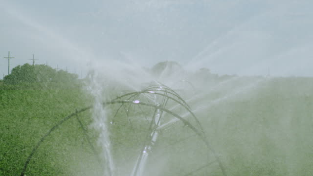 Slow Motion Water sprays from irrigation pipe in alfalfa field