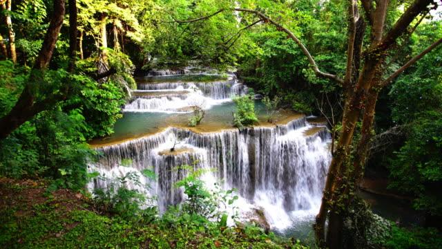 vidéos et rushes de le mouvement lent d'eau stagnante eau: cascade en thaïlande, huay ou huai mae khamin. - végétation verdoyante