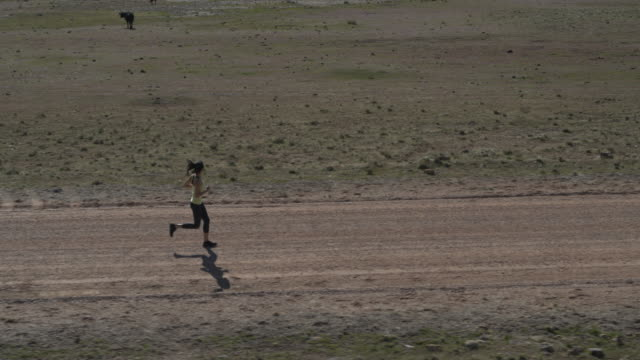 Slow motion wide flyover tracking shot of woman running on dirt road / Meadow, Utah, United States
