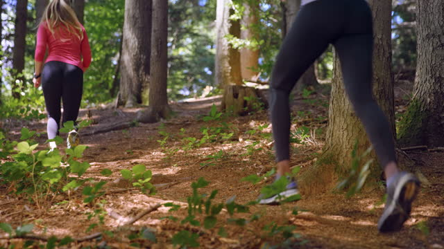slo mo ld two female runners running up the sunny trail in the forest - tree trunk stock videos & royalty-free footage