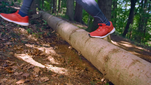slo mo ld man running in the forest and jumping over a fallen tree trunk - vest stock videos & royalty-free footage