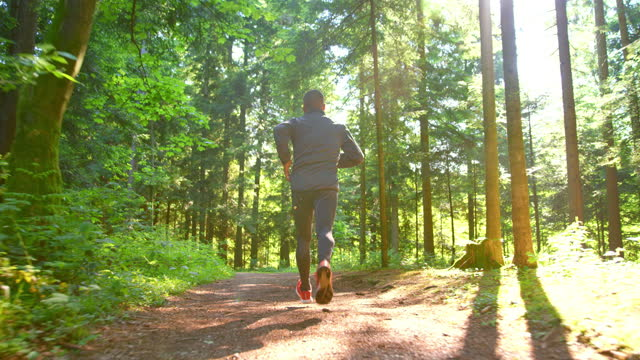 slo mo ts male runner running on a forest path in sunshine - one mature man only stock videos & royalty-free footage