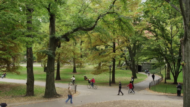 slow motion wide panning shot of people walking in central park / new york city, new york, united states - wide stock-videos und b-roll-filmmaterial