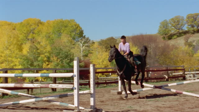 stockvideo's en b-roll-footage met slow motion wide shot female equestrian jumping horse over two fences in arena / elk mountains in background / colorado - alleen één mid volwassen vrouw