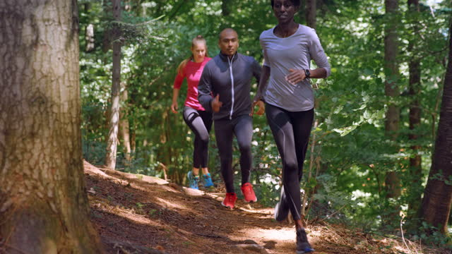 slo mo a man and two women running on a forest trail in sunshine - cross country running stock videos & royalty-free footage