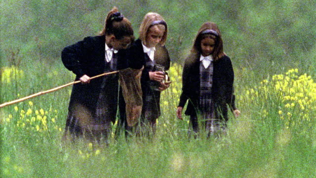slow motion wide shot three girls in school uniforms with butterfly net and jar trying to catch butterfly in field - schoolgirl stock videos and b-roll footage