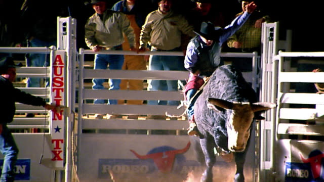 Slow motion wide shot tracking shot men opening rodeo pen / cowboy riding bull / falling off