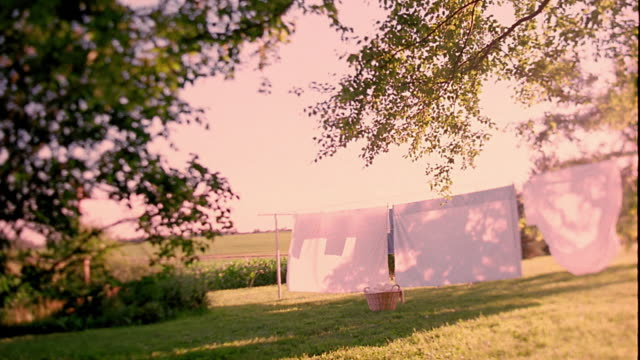 slow motion wide shot young boy and dog running around clothesline + jumping over laundry basket in yard / iowa - 洗濯かご点の映像素材/bロール