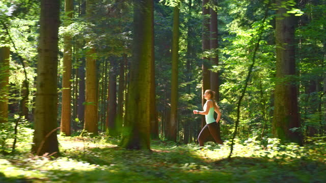 vídeos de stock e filmes b-roll de slo mo ts caucasian woman running in the sunny forest - cabelo louro