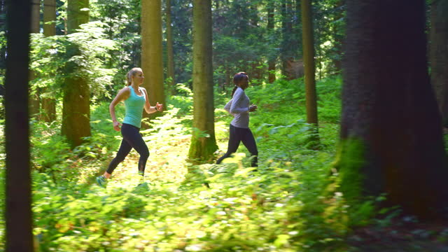 slo mo ts two female friends running in the sunny forest - togetherness stock videos & royalty-free footage