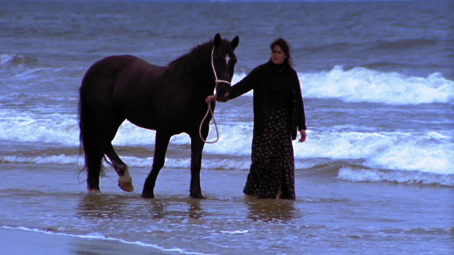 stockvideo's en b-roll-footage met slow motion woman walking with horse on beach / ireland - alleen één mid volwassen vrouw