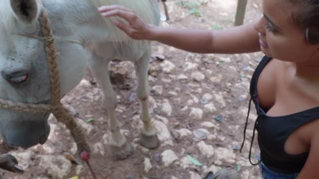 vidéos et rushes de slow motion: young woman stroking tethered grey horse in el limon, dominican republic - sabot