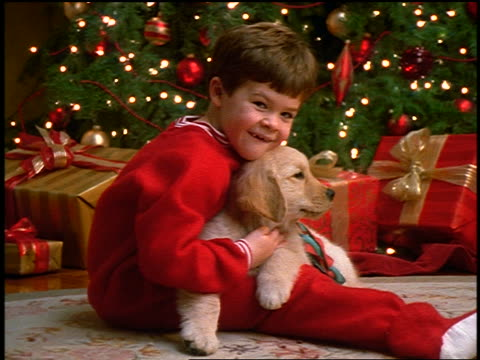 slow motion zoom in PORTRAIT small boy in pajamas holding puppy on lap + hugging it in front of Christmas tree