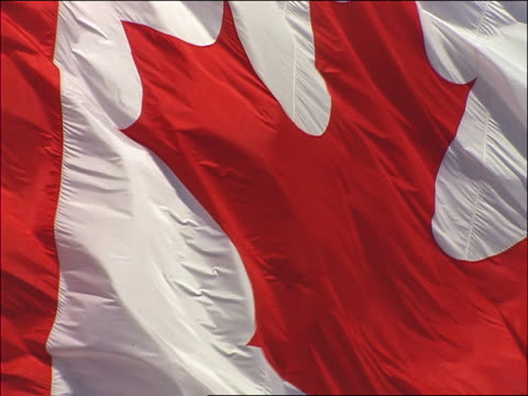 slow motion zoom out from extreme close up of canadian flag blowing in wind / blue sky in background - canadian flag stock videos & royalty-free footage