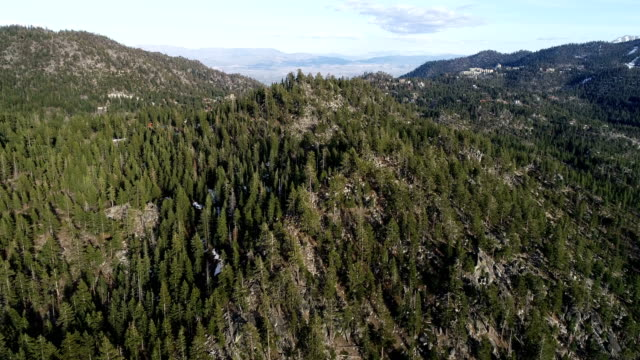 stockvideo's en b-roll-footage met langzaam bewegen over dikke dennenbos en mountain tops sierra nevada bergen luchtfoto drone view lake tahoe, californië - californian sierra nevada