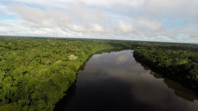 Slow reverse aerial of Amazon river