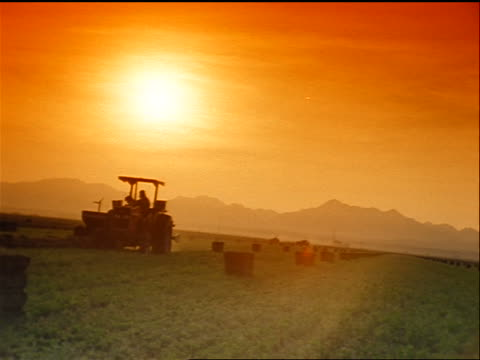 canted slow zoom in tractor moving slowly in field by alfalfa bales / mountains in background / orange filter - alfalfa hay stock videos & royalty-free footage
