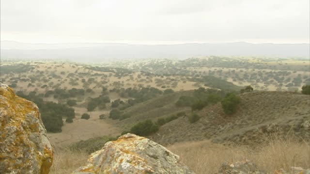 slow zoom out shot of mountains and terrain on a cloudy day on the neverland ranch property in los olivos, california, a slow zoom out shot of a... - ネバーランドバレーランチ点の映像素材/bロール