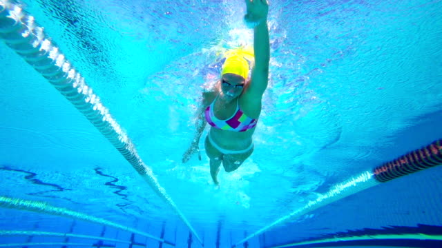 hd slow-mo: young woman swimming front crawl - swimming stock videos & royalty-free footage
