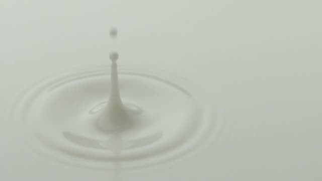 slow-motion: close up of droplet milk with right composition. - soy milk stock videos and b-roll footage