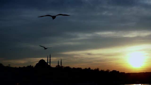 slowmotion istanbul sundown silhouette - yeni cami mosque stock videos & royalty-free footage