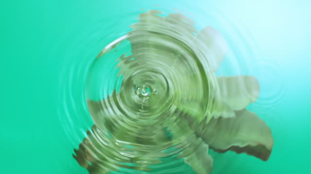 slowmotion movement of wave and ripples on water surface with a submerged green succulent plant, green background - physical structure stock videos & royalty-free footage