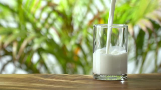 slow-motion: pouring milk into a glass on lush foliage leaf background. - soy milk stock videos and b-roll footage