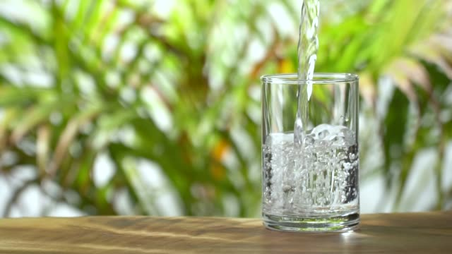 vídeos de stock e filmes b-roll de slow-motion: pouring water into a drinking glass on lush foliage leaf background. - verter
