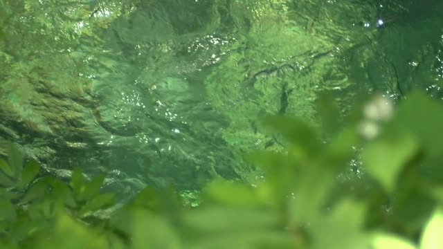 vídeos de stock, filmes e b-roll de slow-motion; river flow, gifu, japan - pureza