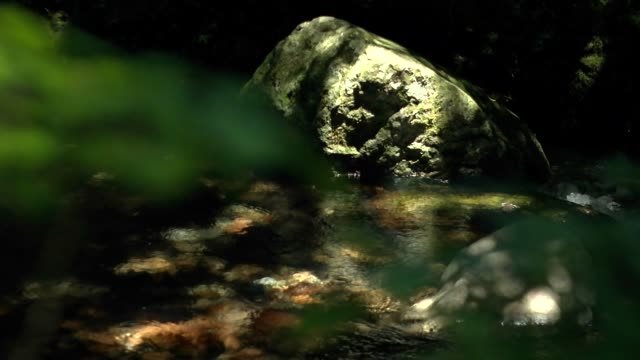 slow-motion; river flow, gifu, japan - purity stock videos & royalty-free footage