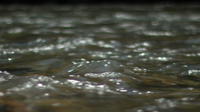 vídeos de stock, filmes e b-roll de slow-motion; river surface, wakayama, japan - pureza